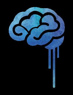 Neurociencia del Dolor